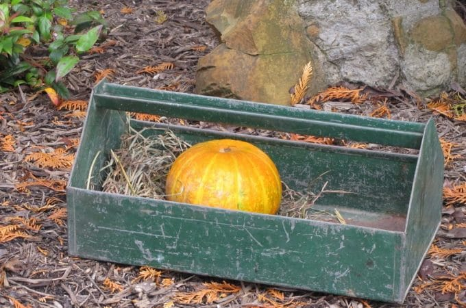 Fall Farm Show Findings
