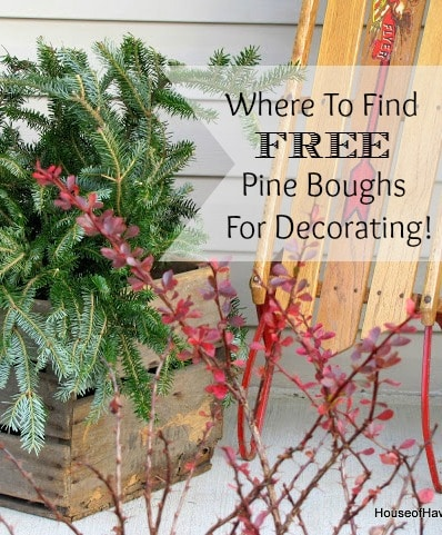 Where To Score Free Christmas Greens
