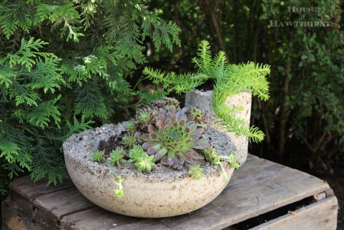 How To Make Hypertufa Planters House Of Hawthornes