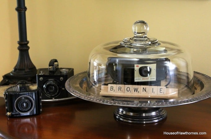 Vintage Brownies Under Glass