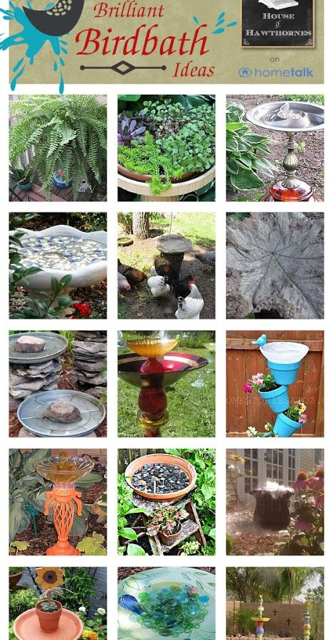 Unique Birdbath Ideas