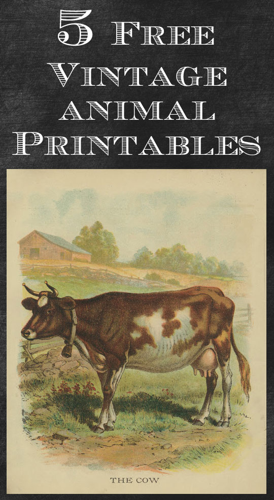 Vintage farmhouse animal printables you could use for crafts or just print out and frame (wouldn't these look cute in a baby's room?) #farmhouse #farmhousestyle #farmhousedecor #printables #frenchcountry #vintagedecor