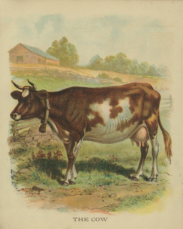 Vintage Animal Printables House Of Hawthornes