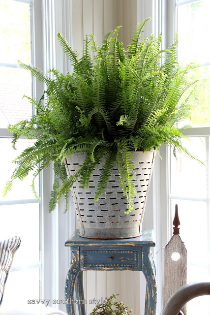 Olive bucket from Savvy Southern Style