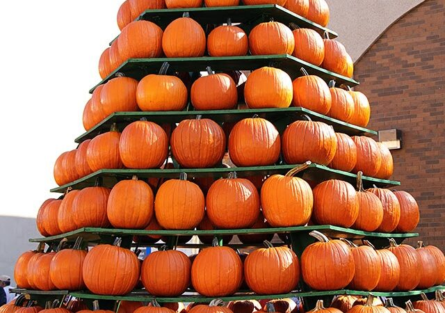 The Circleville Pumpkin Show: A Festival Fit For A King