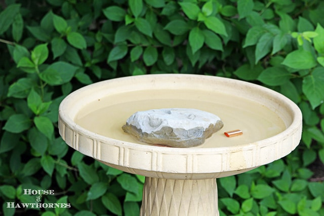 Using copper in the birdbath to keep it clean longer