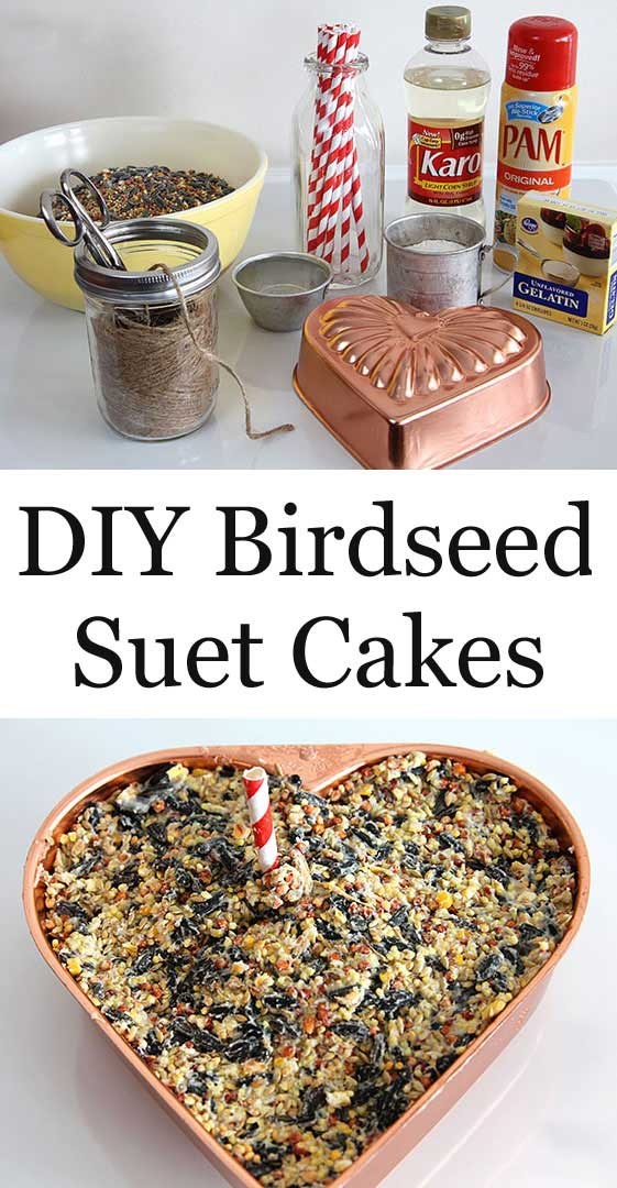Learn how to make DIY Birdseed Suet Cakes for your backyard birds. They're also excellent holiday hostess and teacher gifts that the kids can help with! #birding #birdseed #holidaygifts #diyproject #gardening #gardengift