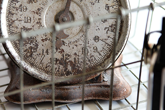 Vintage rusty scale