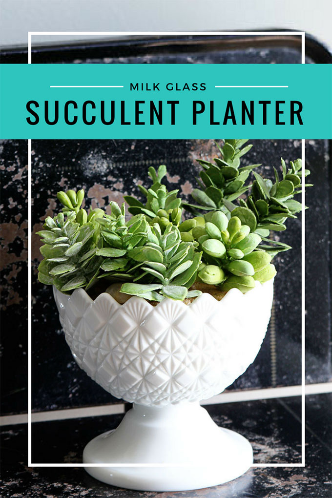 Quick and easy succulent planter made from a repurposed milk glass candy dish. We used faux succulents, but you could use live plants.