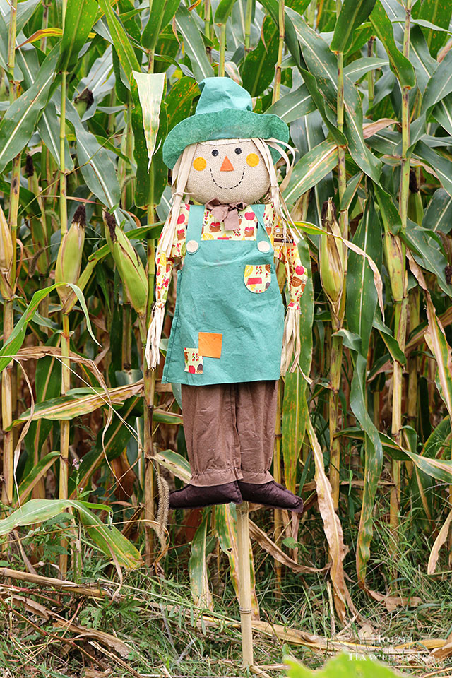DIY scarecrow for fall decor. Used an inexpensive JoAnn Fabrics' stick scarecrow and dolled her up! via houseofhawthornes.com