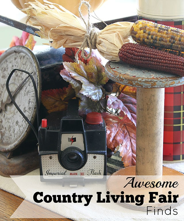 Here are some of the trendy eclectic, modern country treasures found at the the Country Living Fair in Columbus Ohio 2014. No siree, this isn't your mama's Country Living Fair! via houseofhawthornes.com