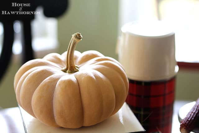 Quick and easy fall table decor. Just add a few key fall elements like acorns, pumpkins or Indian corn to the table and you've got an instant fall look. via houseofhawthornes.com