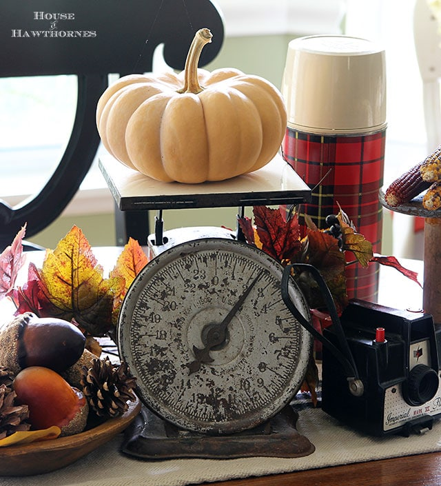 Quick And Easy Fall Table Decor