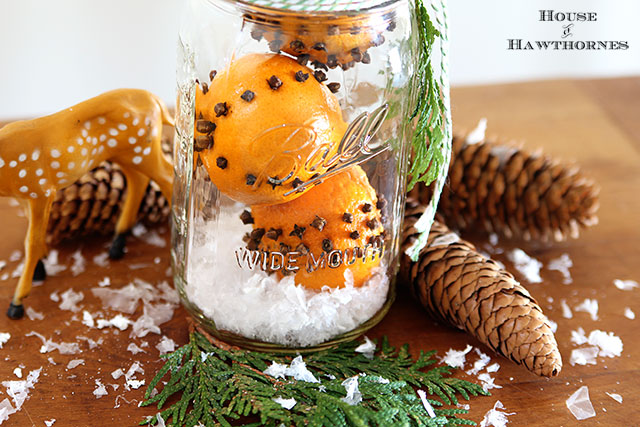 How to make cloved orange pomander balls for Christmas - (really they're clementine oranges). They make a great holiday hostess or teacher gift.