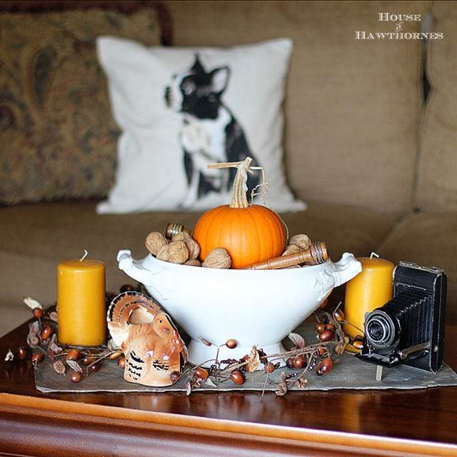 Learn how to make simple Thanksgiving table decor using stuff found at thrift stores or around the house. More personality than a store bought centerpiece!