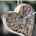 Birdseed-Wreath-2-4785