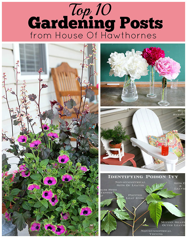 Top 10 gardening ideas for the year including Gardening DIY Projects, plant inspiration and porch decor.