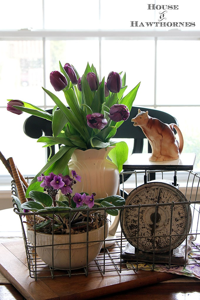 Tips on how to make your grocery store tulips last longer and stay perky. Nobody likes a droopy tulip for spring decorating!
