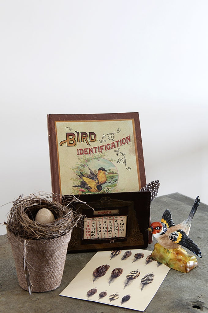 Vintage bird nest home decor for your spring vignettes