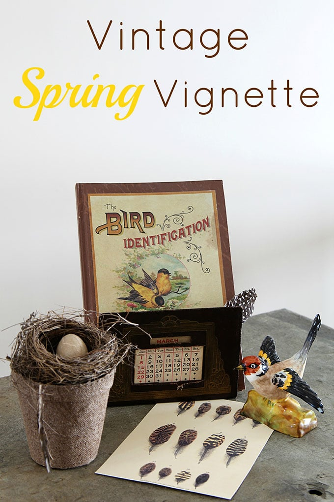 A quick and easy spring DIY project creating a vignette using vintage bird nest home decor. Abandoned nests can be found in the wild or at your local craft store.