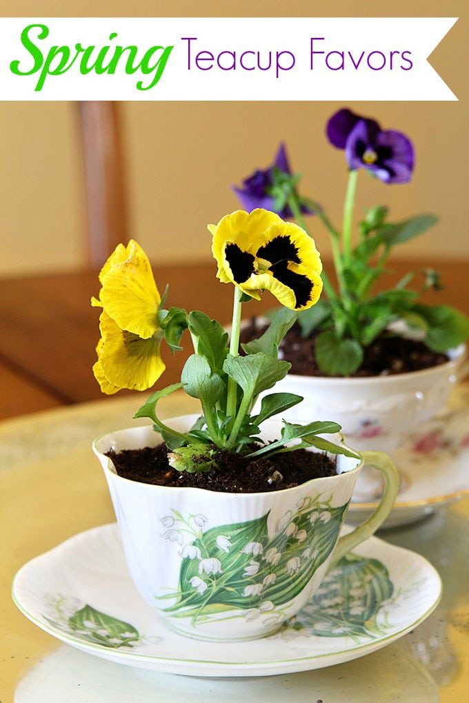 How to make quick and easy spring teacup table decorations. This inexpensive and simple table decor idea is perfect for Easter or Mother's Day and would make creative favors or table number holders for weddings too!