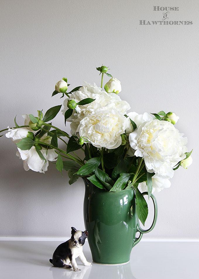Duchess de Nemours Peonies in a vintage green vase