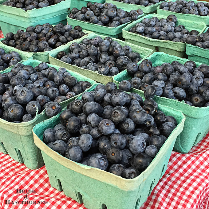 Blueberries at a farmer's market