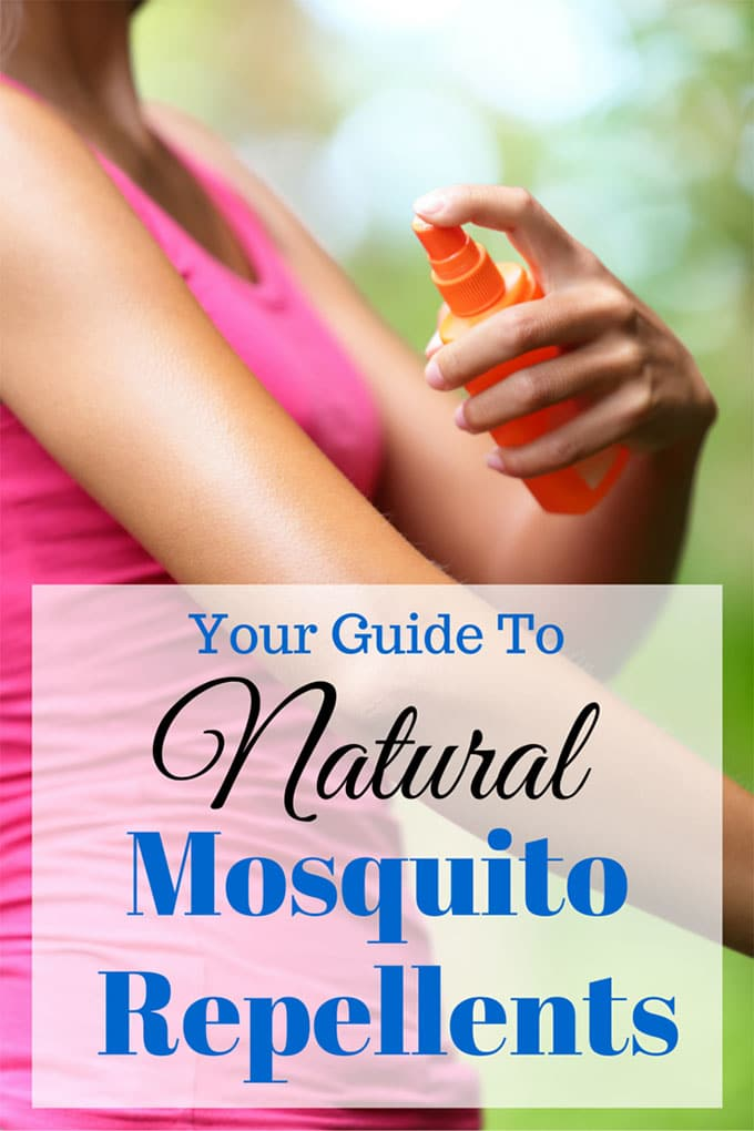 how to keep mosquitoes out of your house naturally