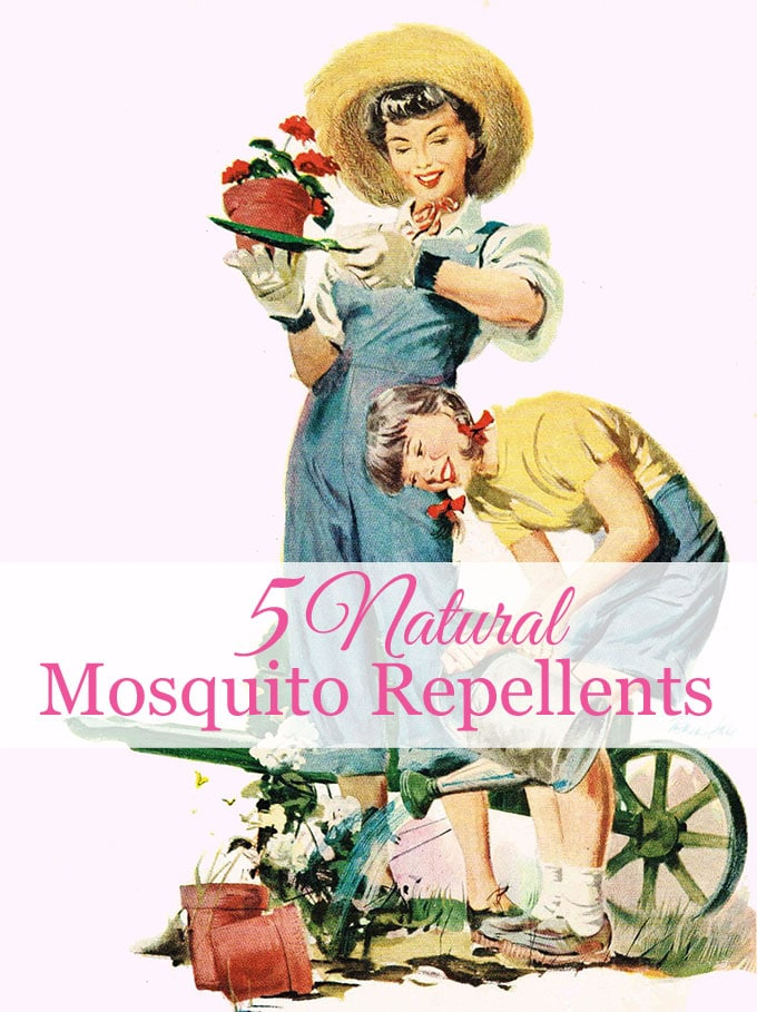 Natural ways to repel mosquitoes without bug spray, including plants that repel mosquitoes, DIY mosquito repellent recipe, and homemade citronella candles.