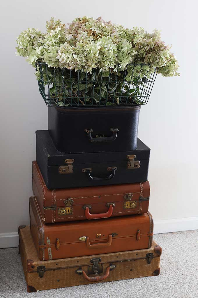 Basket of dried hydrangea - instructions on how to dry hydrangea
