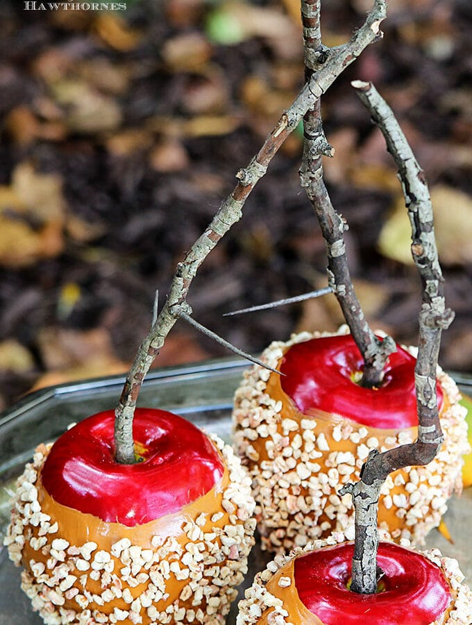 Quick and easy instruction for how to make DIY faux caramel apples for your fall decor. They are great for Halloween decorations also and they last years.