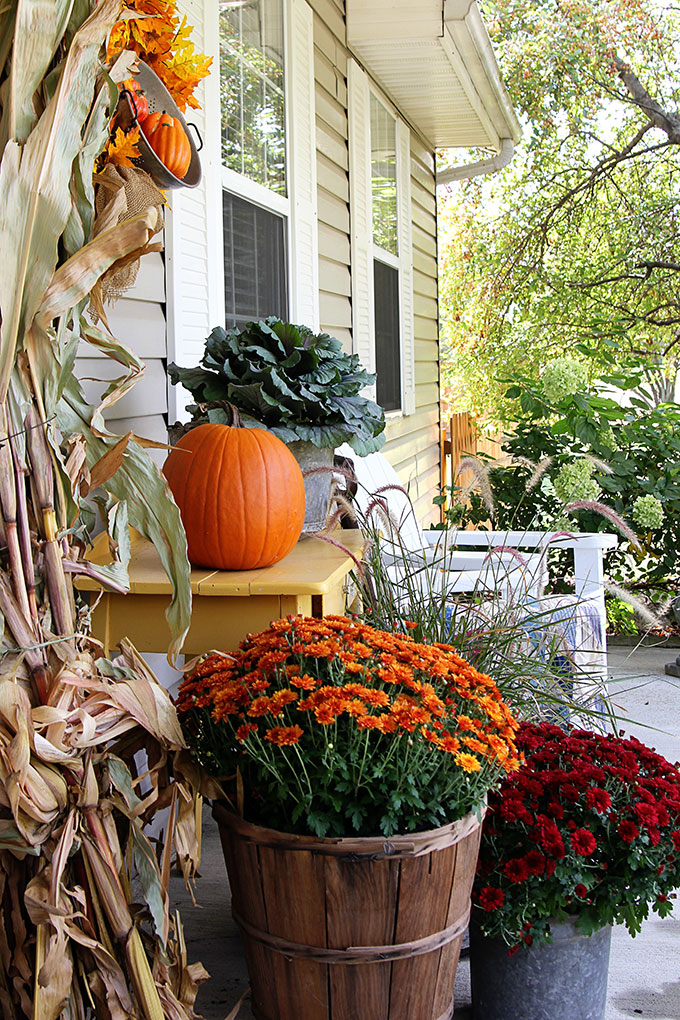 Mums Pumpkins And Cornstalks Create Traditional Autumn Porch Decor