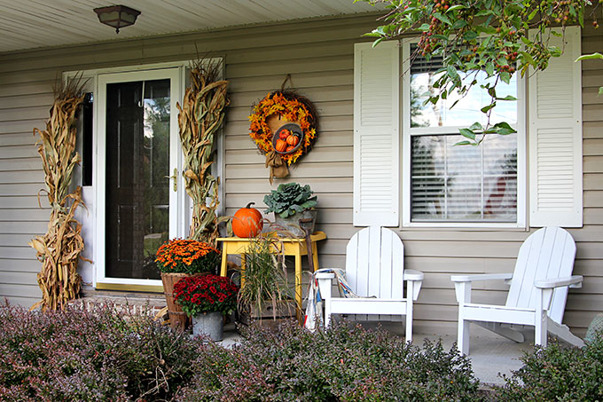 Mums Pumpkins And Cornstalks On A Fall Porch