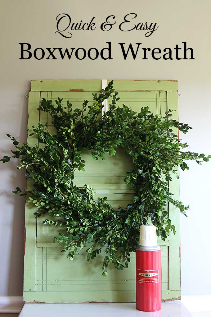 Learn how to make a super quick and easy boxwood wreath. And did I mention it is inexpensive? Perfect for Christmas, yet looks great any time of the year.