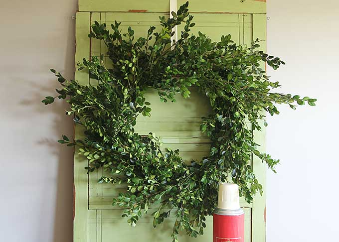 How to make a real boxwood wreath