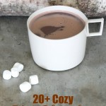 Discover over 20 hot chocolate recipes perfect for warming up your winter days. Including traditional, crockpot and boozy recipes.
