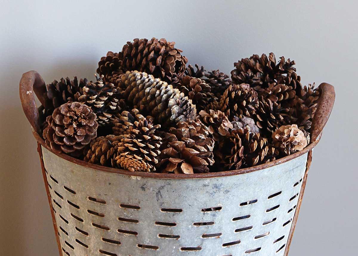 pine cones in winter home decor