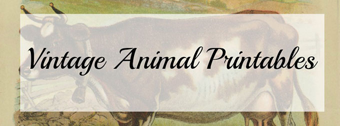 Vintage-Animal-Printables