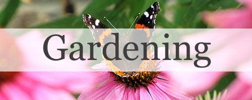 Gardening Posts