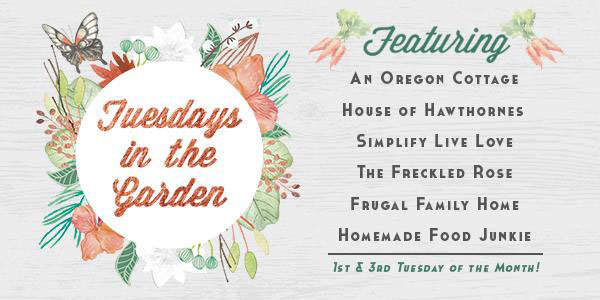 Tuesdays In The Garden