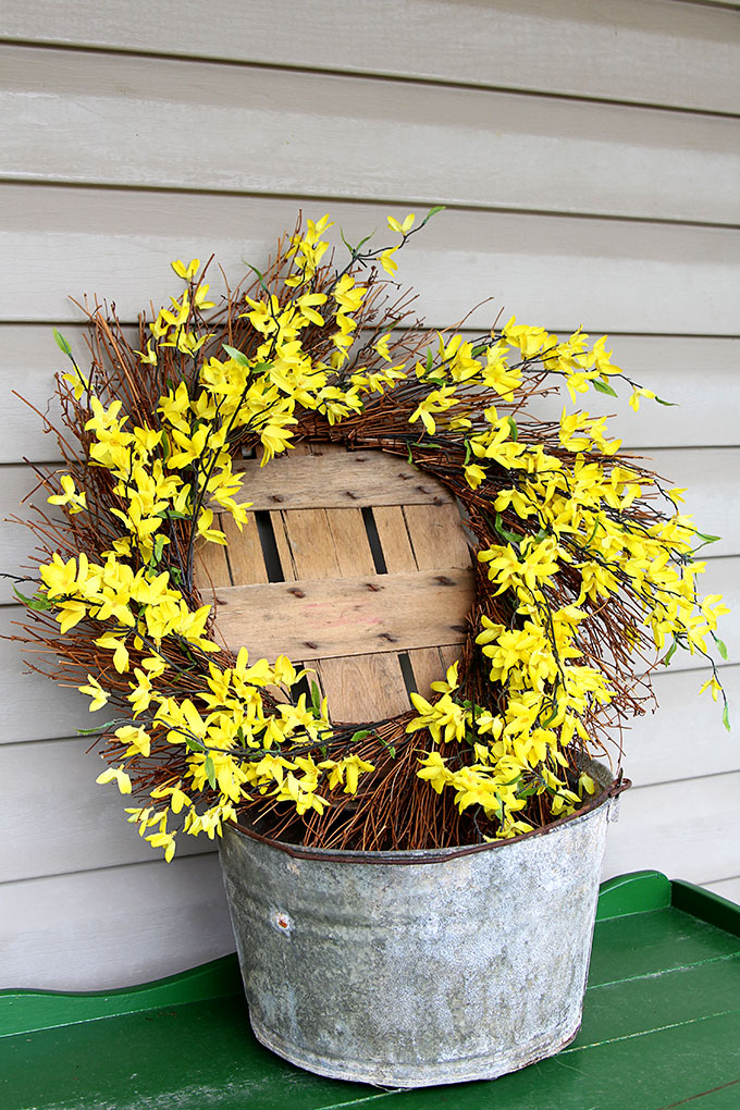 Forsythia wreath placed in a galvanized bucket for budget friendly spring porch decorations