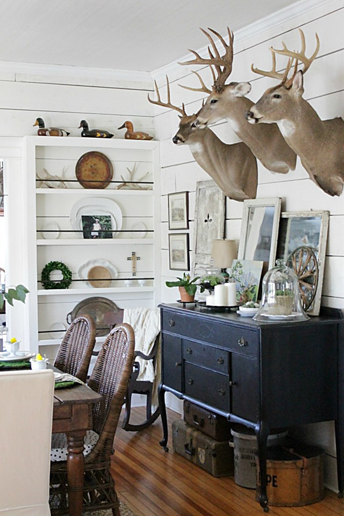 mounted deer heads used in home decor