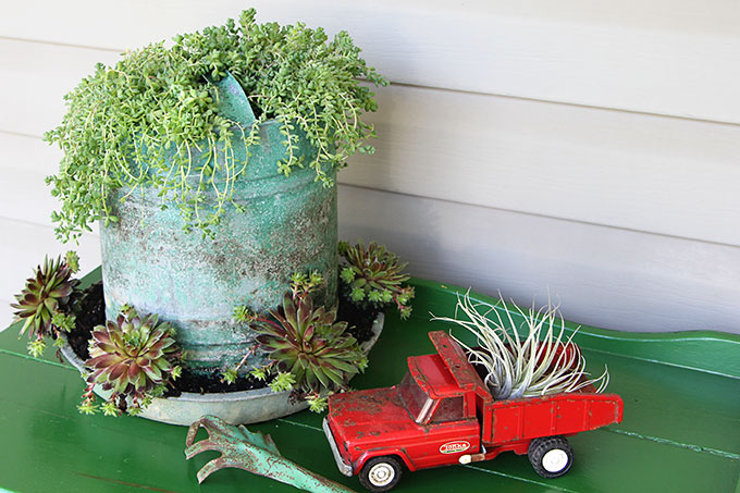 A chicken feeder or waterer filled with succulents is a great way to add a little farmhouse decor to your garden, porch or patio this summer. Other farmhouse garden planter ideas and tips on growing succulents are included!