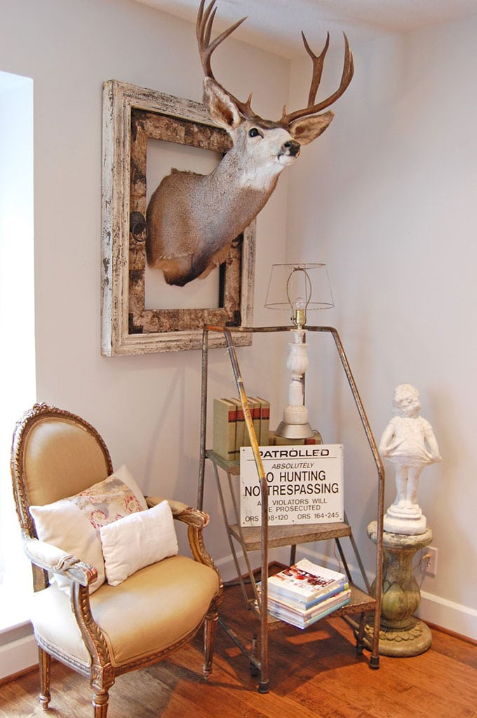 mounted deer head in a frame