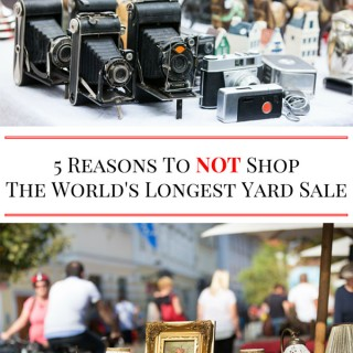 5-Reason-To-NOT-ShopThe-Worlds-Longest-Yard-Sale-1