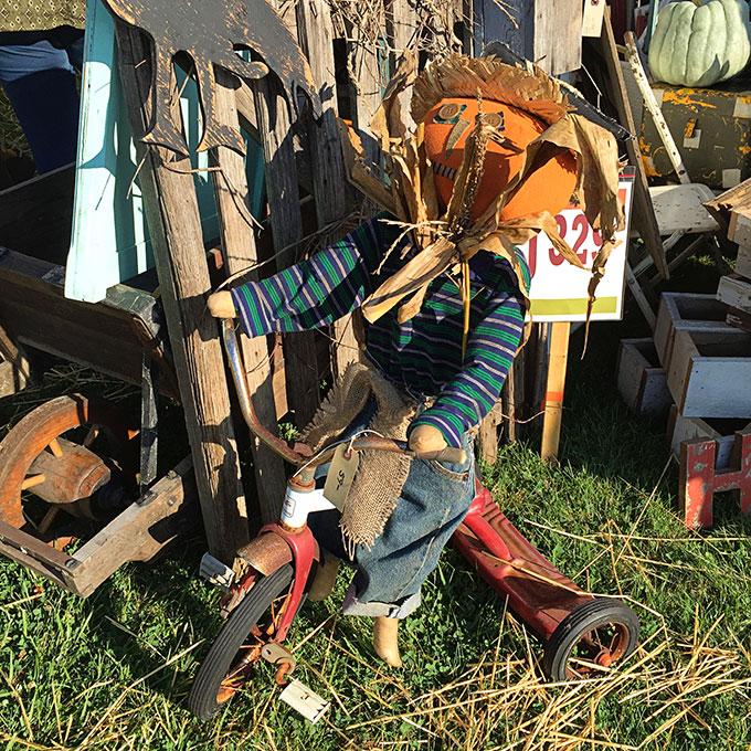 pumpkin-head-scarecrow-4337