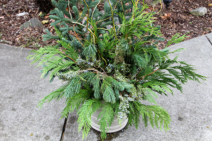 winter-evergreen-planter-6045
