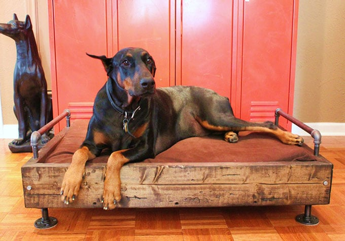 Industrial pipe dog bed