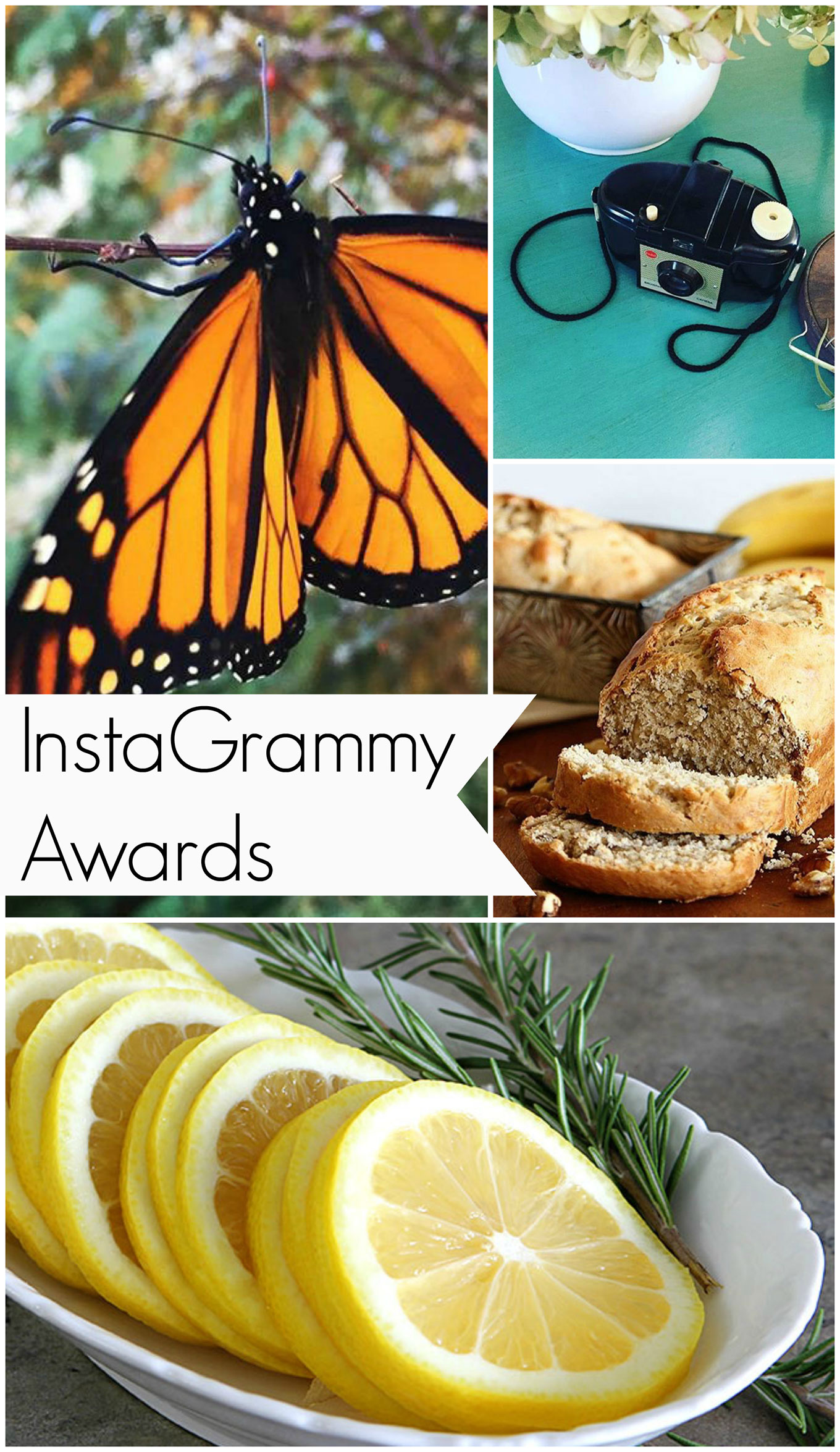 The Grammy Awards for Instagram aka the InstaGrammys is where I showcase my top photos from Instagram this year and give myself a trophy or two.
