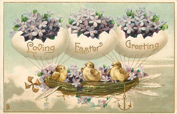 Vintage Easter images - printable Tuck postcard image - chicks flying in nest